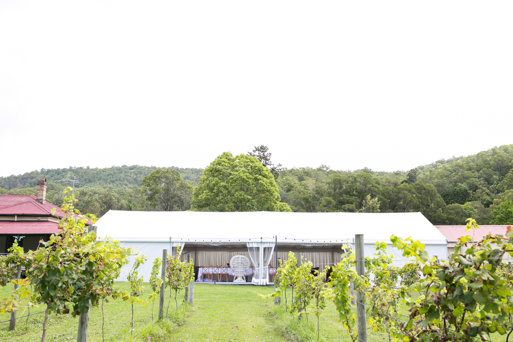 O'Reilly's Vineyard Marquee.jpg