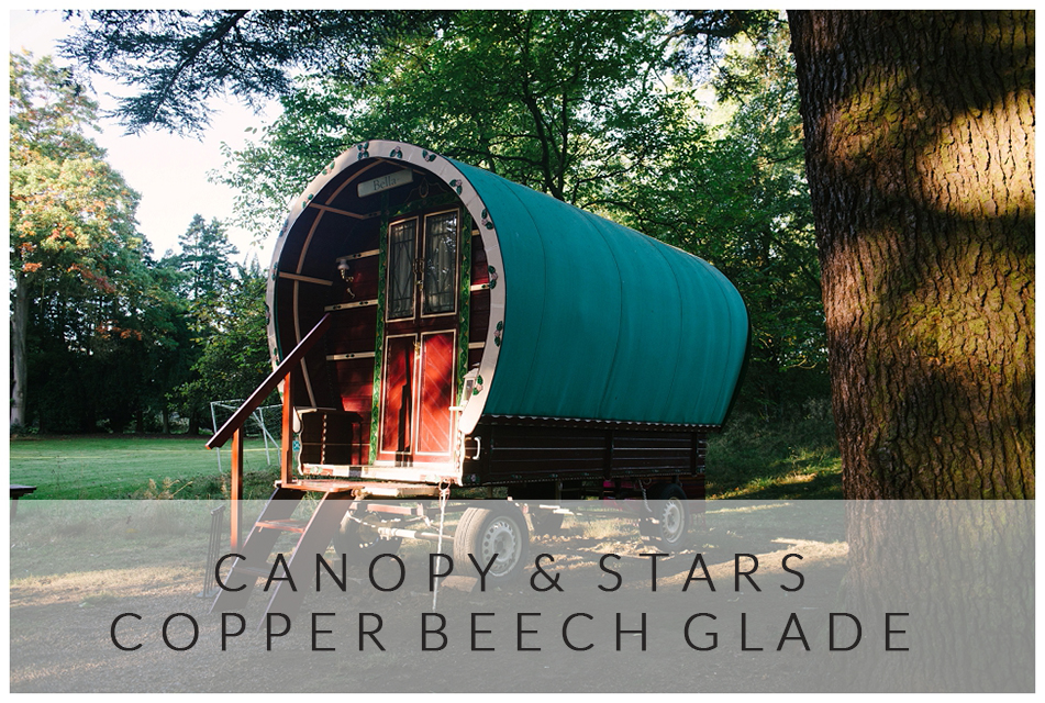 GLAMPING AT COPPER BEECH GLADE