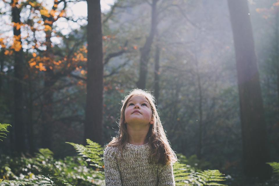 Sarah Mason Photography Yorkshire Portraits Family Photographer.jpg