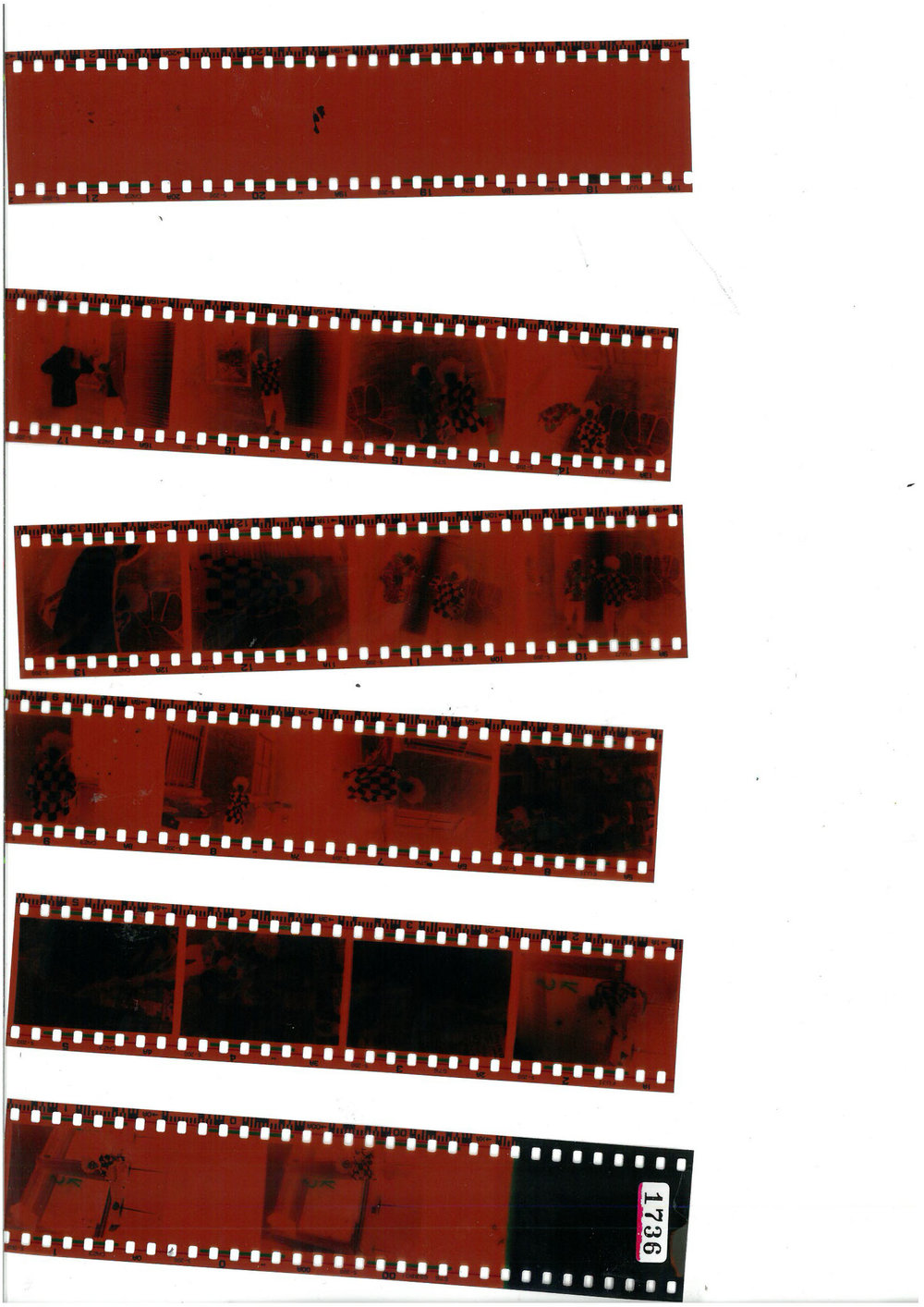film strip.jpg