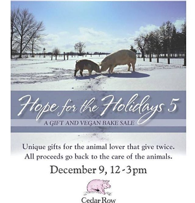 Spread some holiday cheer & visit @cedarrowfs tomorrow for their hope for the holidays open house. #vegan bake sale onsite and if you're needing gifts for friends & family check out their Merch with all proceeds going to support the animals💖