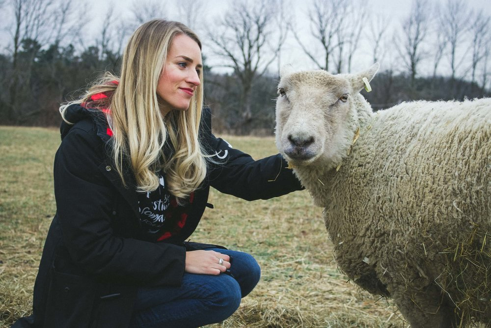 Camille with Sheep at Wishing Well Sanctuary.jpg