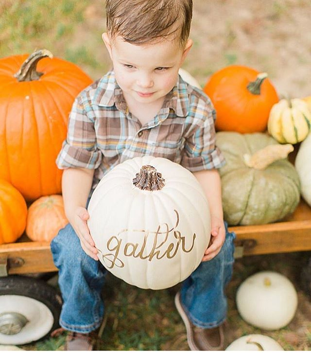Guess what time it is!? Mark your calendars, Friday September 7th our custom faux pumpkins are back! Limited stock so you'll want to grab them quick! 'Tis the season!