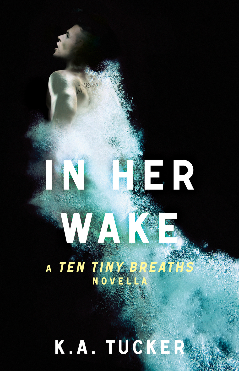In Her Wake cover (1).jpg