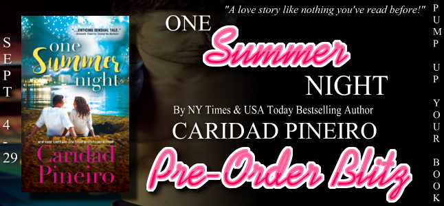 One Summer Night Pre-Order Blitz banner.jpg