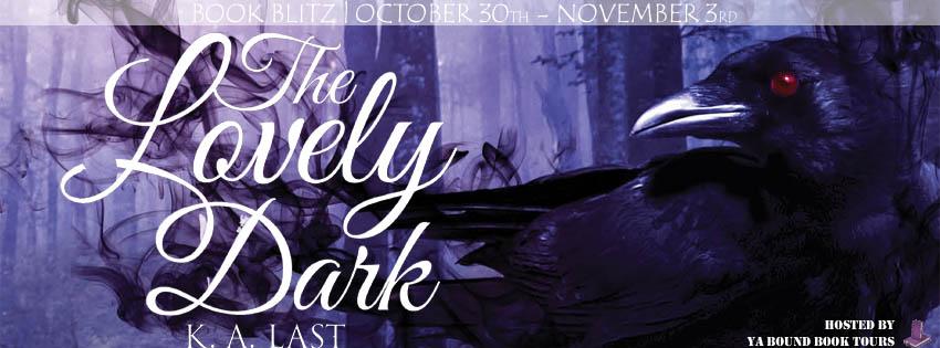 The Lovely Dark blitz banner.jpg