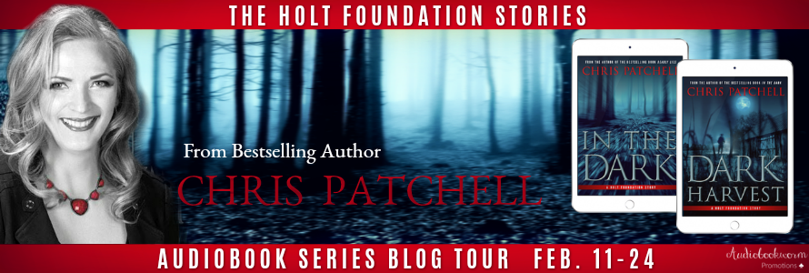 Holt Foundation Series Banner.png