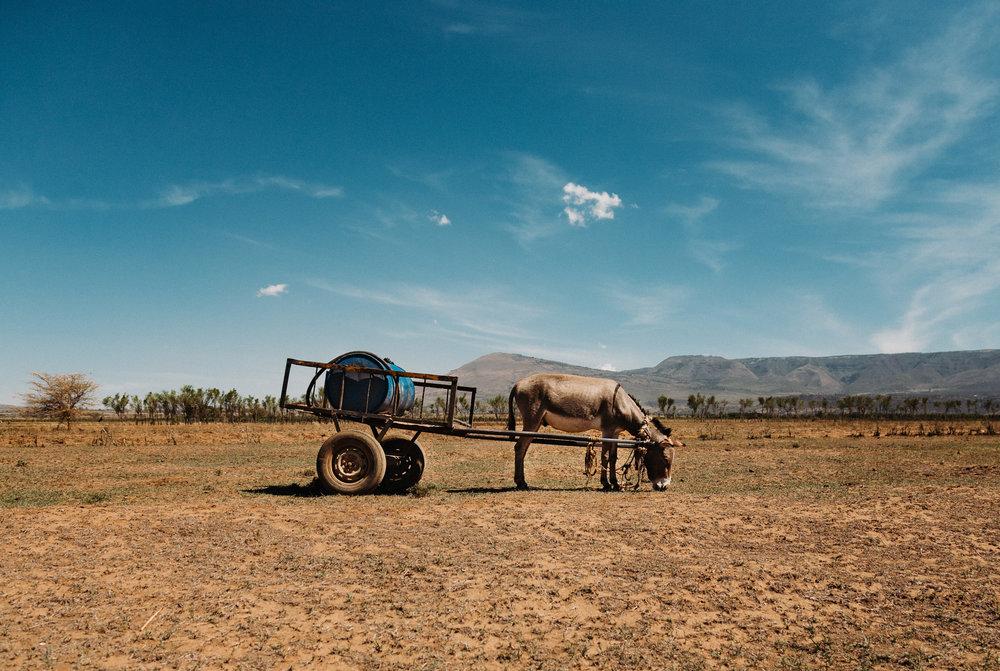 Jaster.co Canadian Documentary Photographer-104.jpg