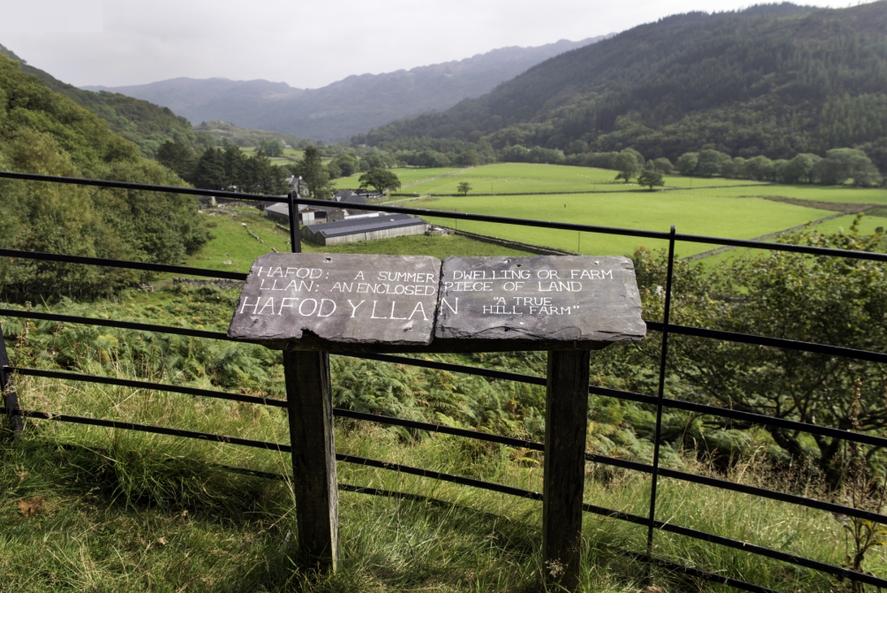Field names on slate by Phoebe Tonkin