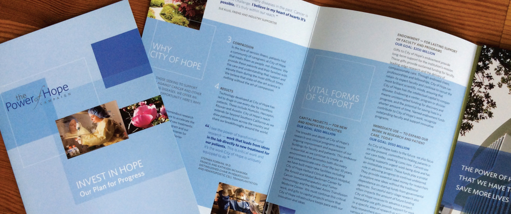 Kelsh Wilson Design / City of Hope / Campaign Communications / Case Study