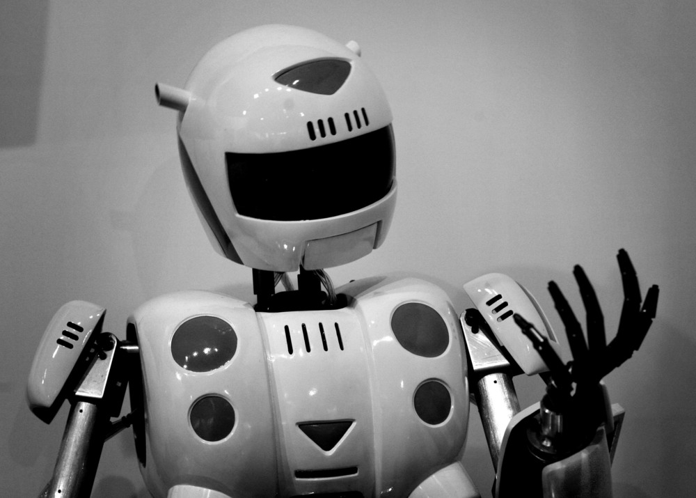 dgRobots09.JPG