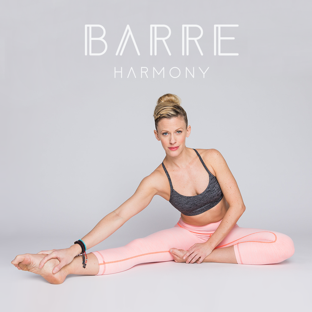 Barre Harmony Program Art