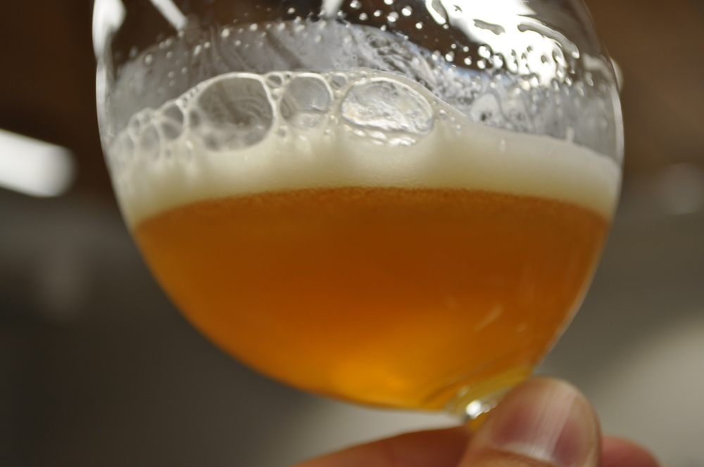 Nelson Sauvin Pale Ale with English Yeast Strain