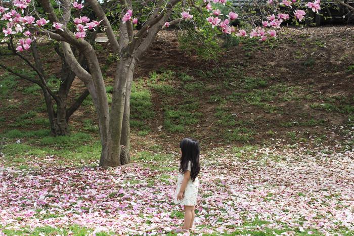 cherry-blossom-lorelai-zara-dress