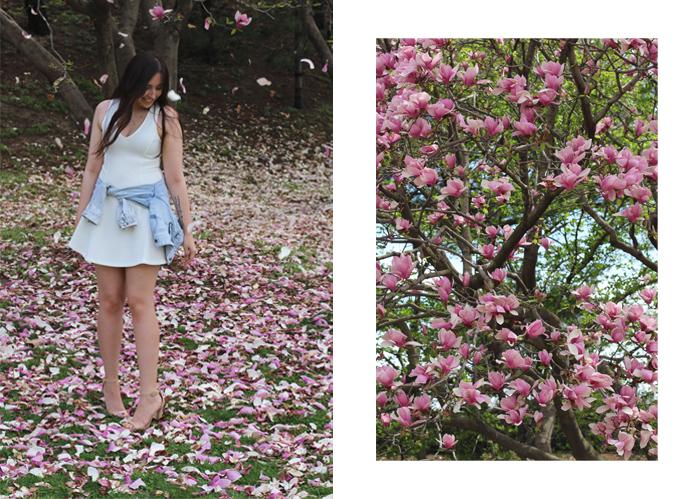 dc-cherry-blossoms-forever-21-zara