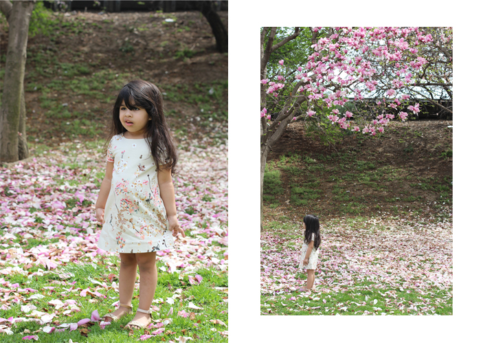 lorelai-zara-kids-cherry-blossom-dress-washington-dc