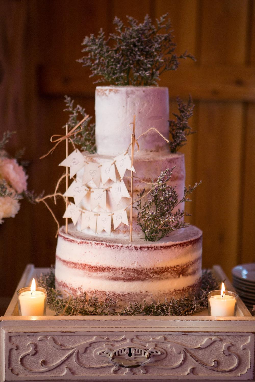 Drake Photography Cake.jpg