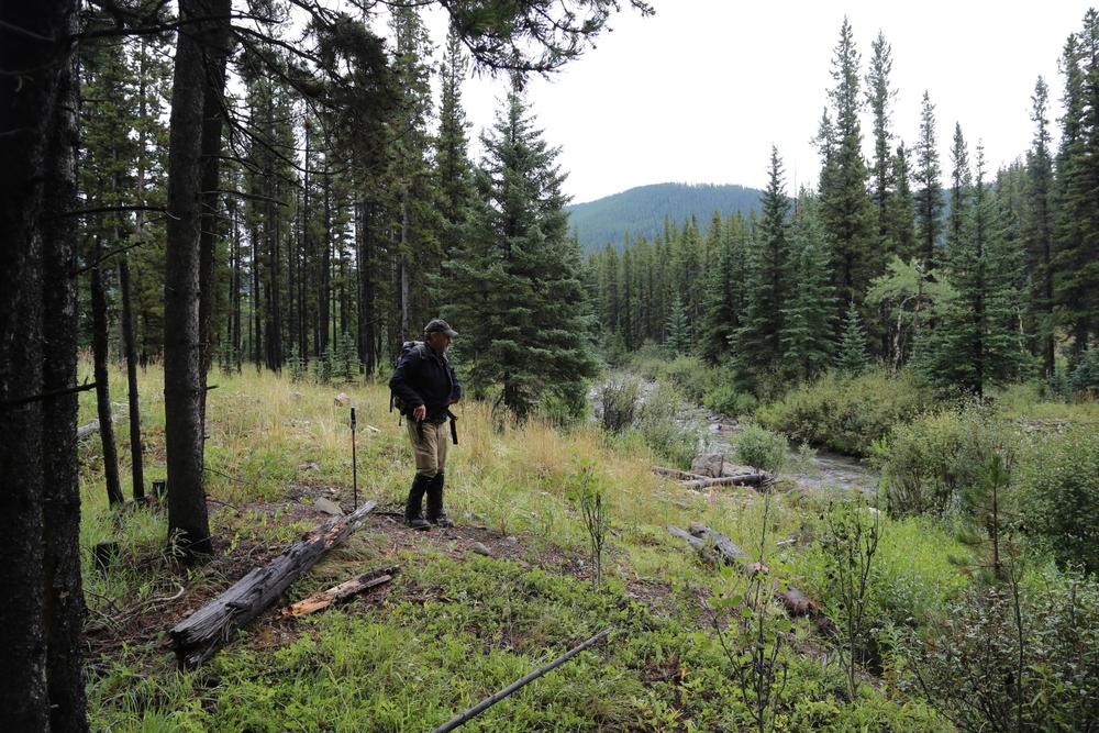 Journey to the Headwaters of Hidden Creek