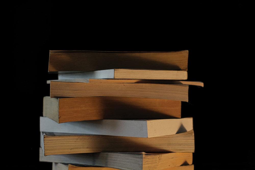 Literaturlenz