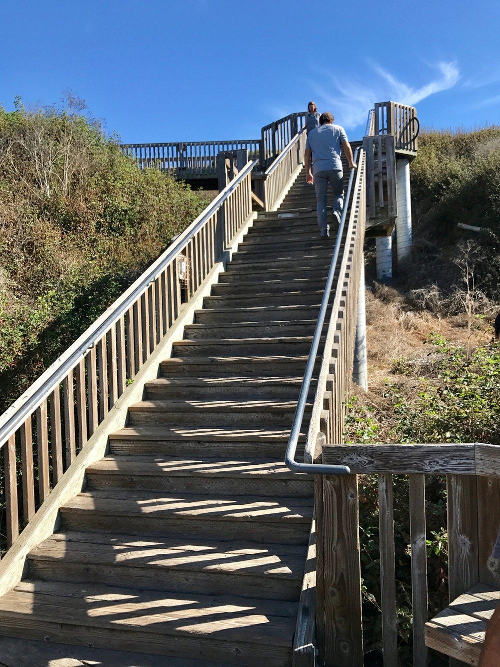 Stairs Aptos.jpg