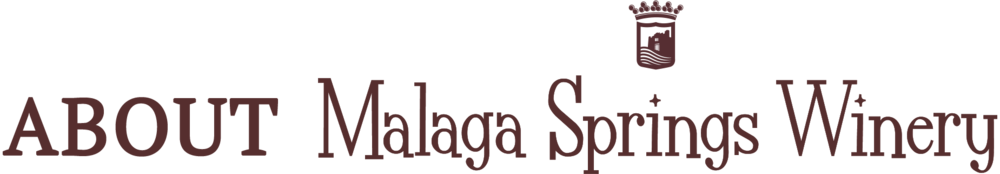 MalagaSprings-Logo-icon-AboutPage.png