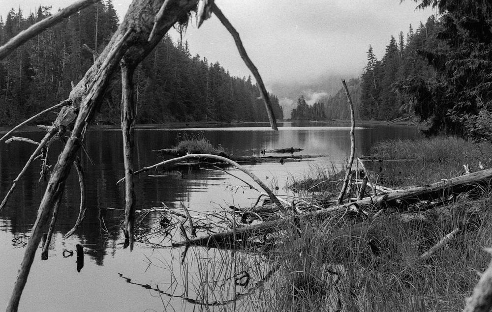 Back County Lake Outside of Ketchikan Alaska