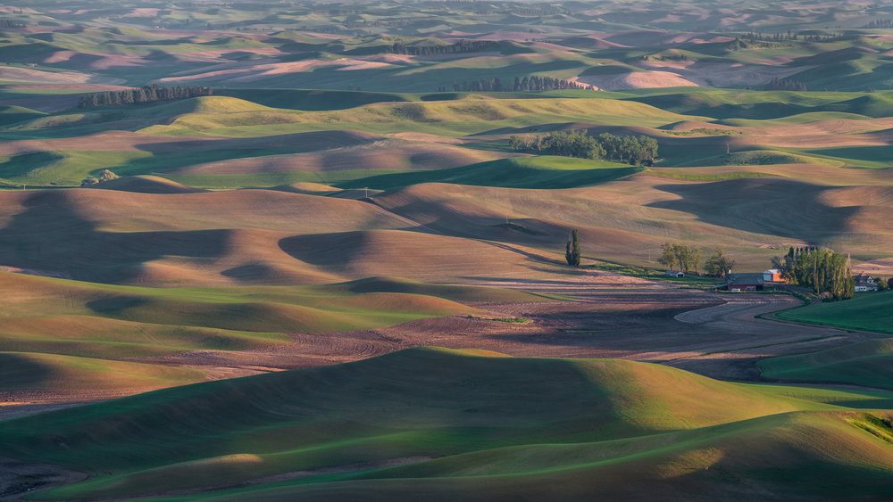 Steptoe Butte Sunset: Steptoe Butte Area, WHI (WA) EQ: D800, 70-200mm f/4.0   Taken: 6-5-2017 at 19:08 Settings: 200mm, 1/160s, f/9.0, ISO160, 0EV         Conditions: Clear