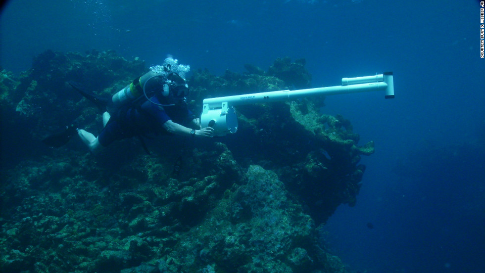 Image Courtesy Burt. D. Webber, Jr via CNN: http://www.cnn.com/2012/03/13/business/sunken-treasure-business/