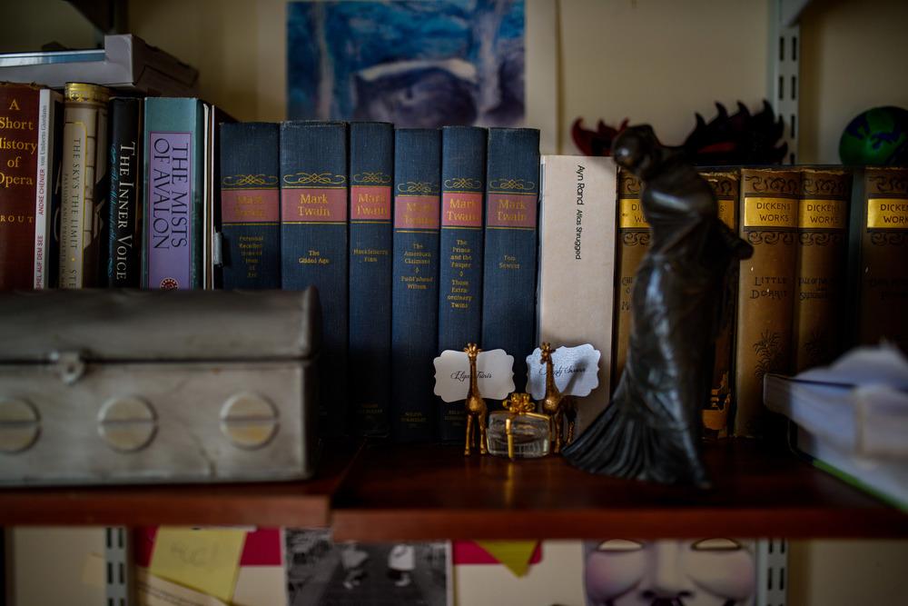 Shelf of Classic Literature Books
