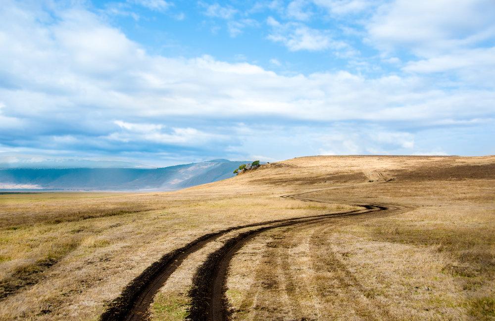 Tanzania-Earth-Photo-By-Tricia-Suriani-Ramsay-3.jpg