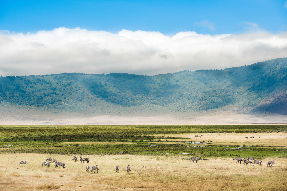Tanzania-Earth-Photo-By-Tricia-Suriani-Ramsay-5.jpg