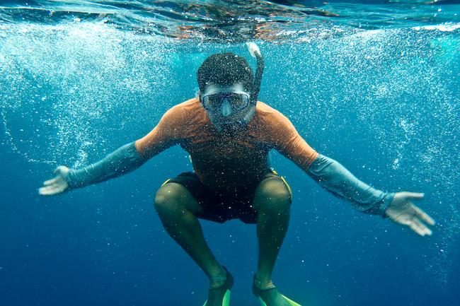 Snorkeler photograhs a Galapagos penguin, the Galapagos Islands, Ecuador.