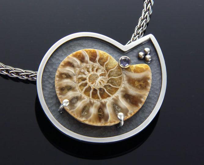 Framed Golden Ammonite