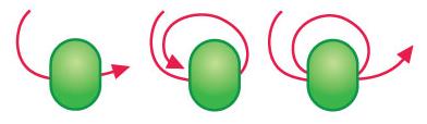 stop-bead-kat-kramer.jpg