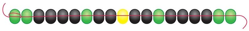 Fig 2: 2 DG – 4 BL – DG – 2 BL – LY – 2 BL – DG – 4 BL – 2 DG