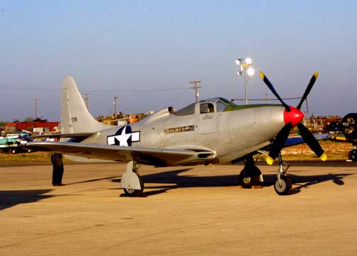 P-63_Kingcobra_0020.jpg