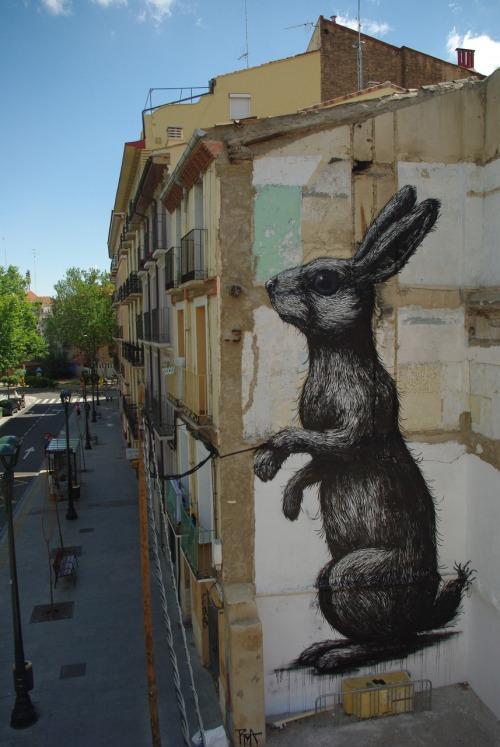 ROA, Zaragoza Art to Mural Festival, 2014