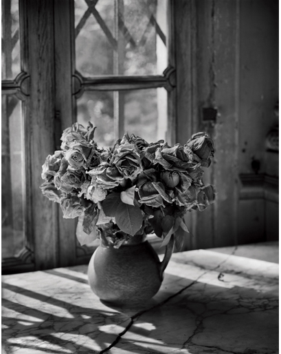 Flowers    Madame Simon Residence, France   May 13, 2003. Platinum and palladium print.