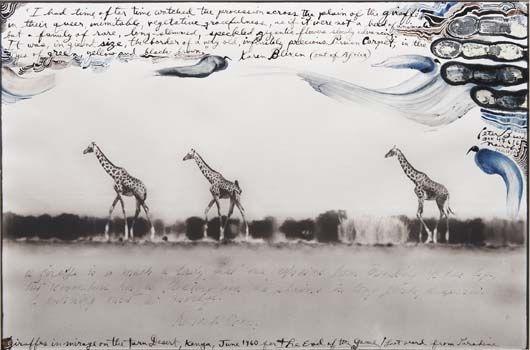 beard_peter_giraffes.jpg