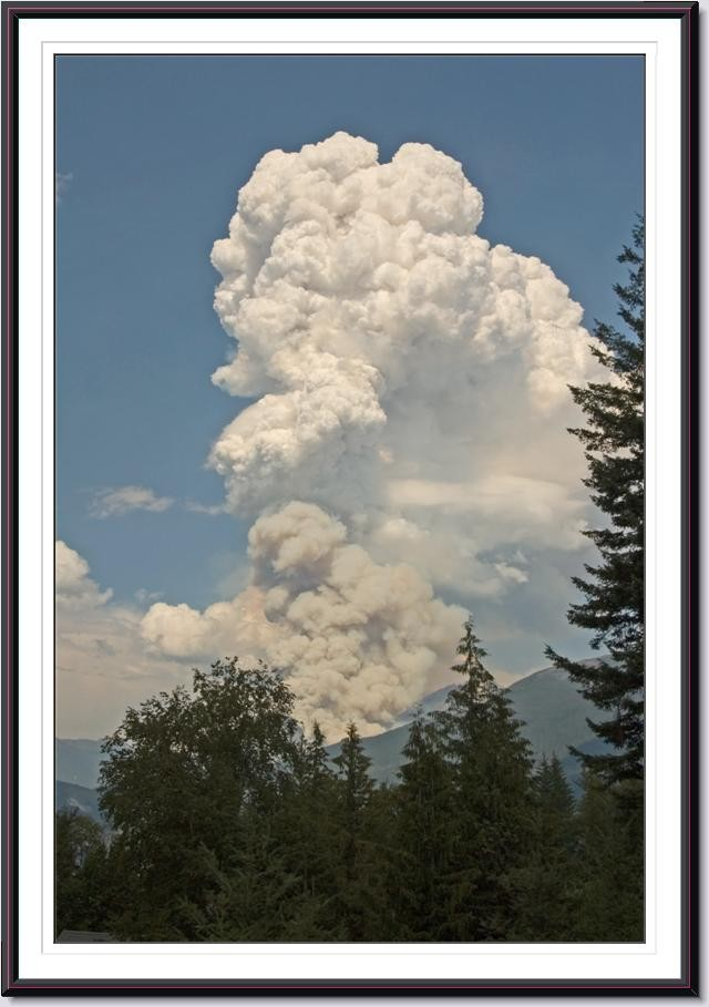 2007 Hamill Creek fire