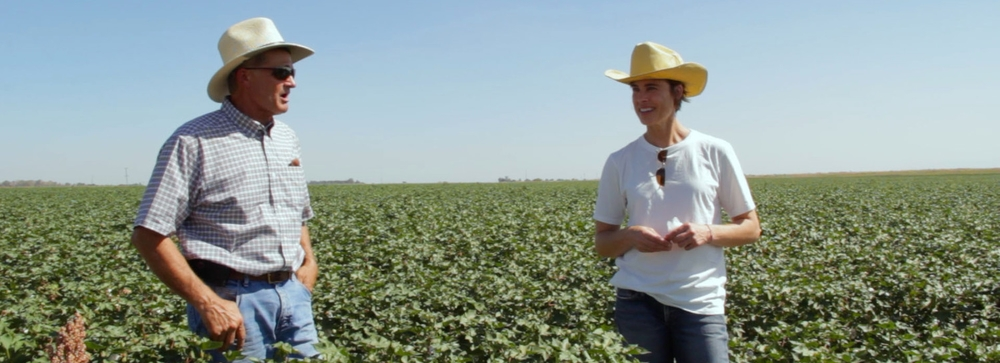 Gary Martin and Lydia Wendt discuss the Cleaner Cotton™ crop