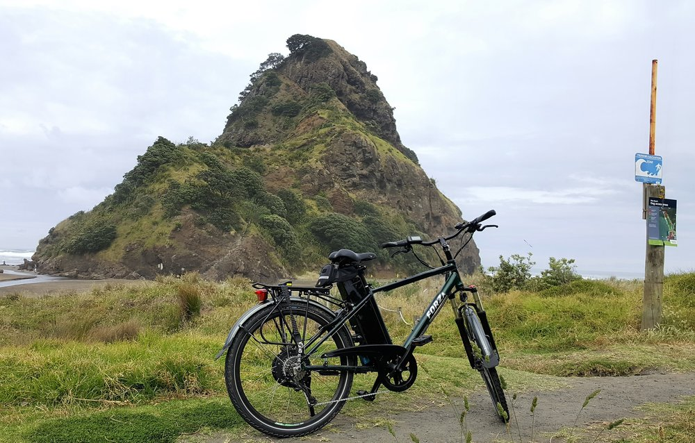 Lion Rock at Piha