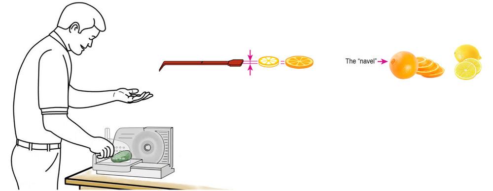 CQ-Lemon-Orange-Infused-Water-Recipe-Step-1-Cut-Fruit-Using-CQ-Slicer-Key.jpg