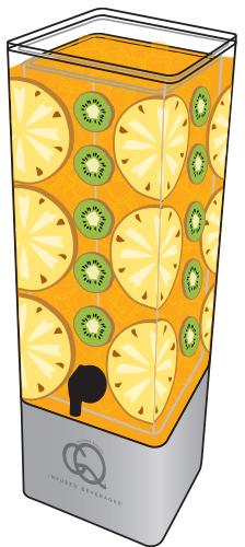 CQ-Peach-Pineapple-Kiwi-Spa-Water-Recipe-Example-Image.jpg