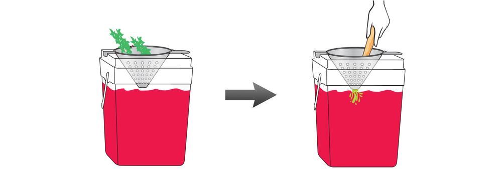 CQ-Strawberry-Basil-Spa-Water-Recipe-Step-4-Infusing-Water-Fresh-Strawberry-Basil.jpg