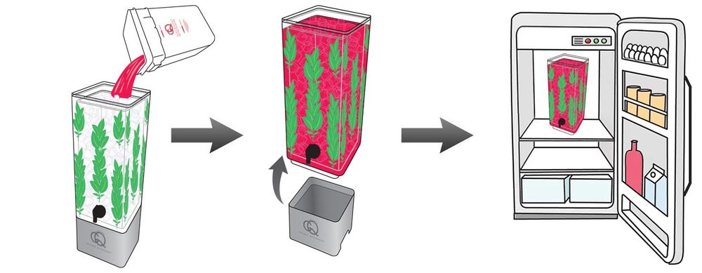 CQ-Strawberry-Basil-Spa-Water-Recipe-Step-6-CQ-Refresh-Refrigerate-Reuse.jpg