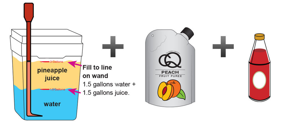 Peach-Cinnamon-Pineapple-Juice-Infusion-4.jpg