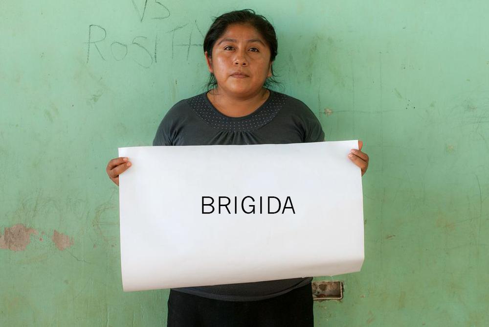 BRIGIDA.png