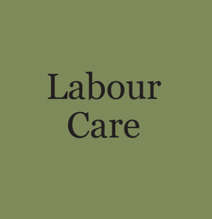 labourcare (1).jpg