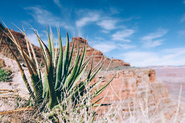The Grand Canyon | StyleComb blog